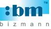 Bizmann System (S) Pte Ltd