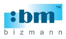 Bizmann System